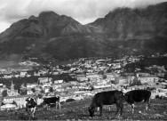 1922: Scene from Bo Kaap