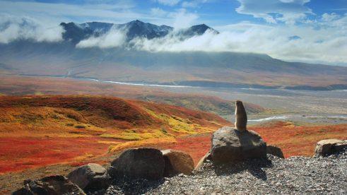 ArcticGroundSquirrel_Denali